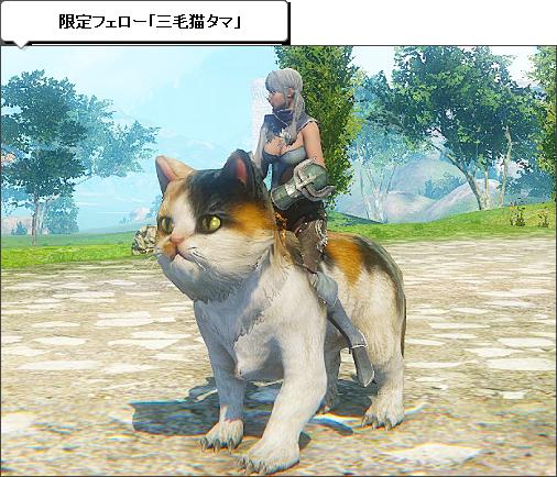 限定フェロー「三毛猫タマ」
